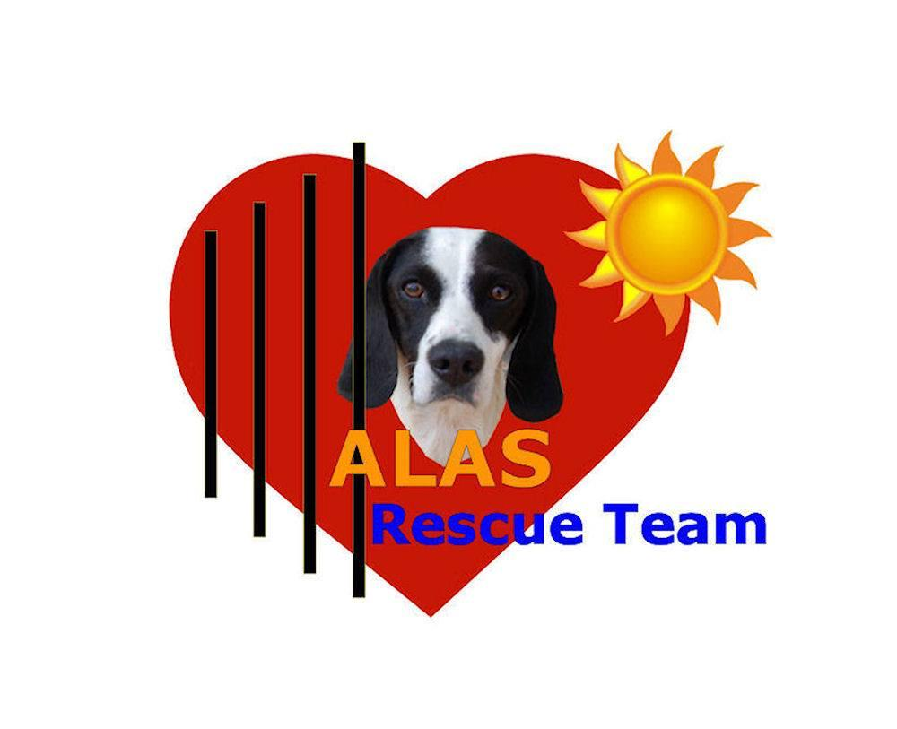 STICHTING ALAS RESCUE TEAM