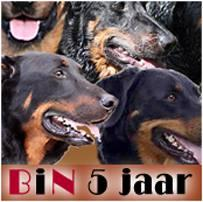 STICHTING BEAUCERON IN NOOD