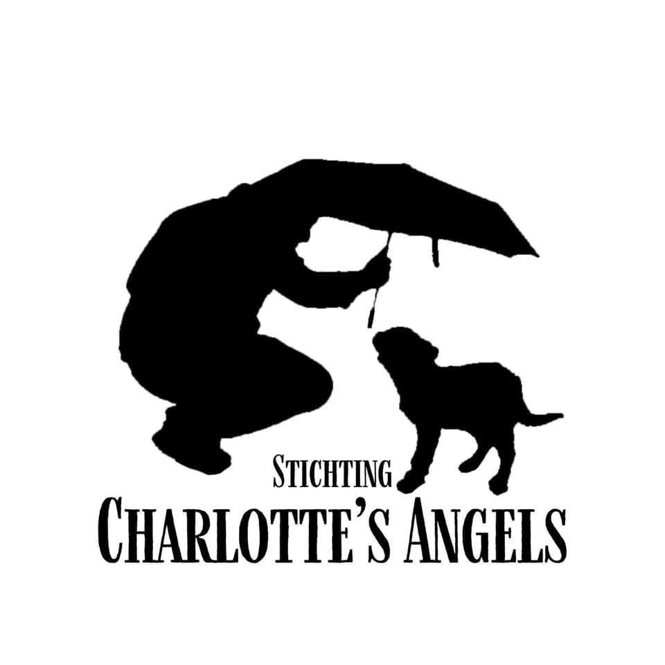 STICHTING CHARLOTTE'S ANGELS
