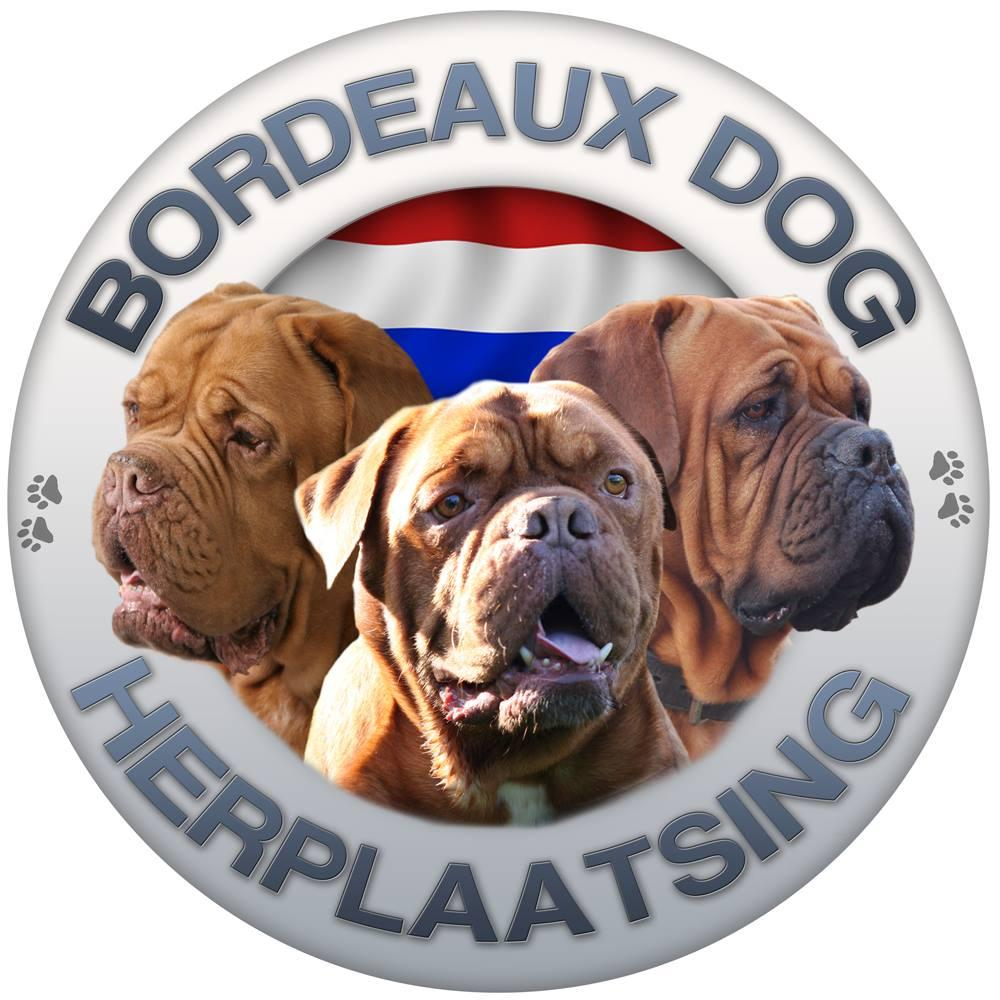 BORDEAUXDOG HERPLAATSING