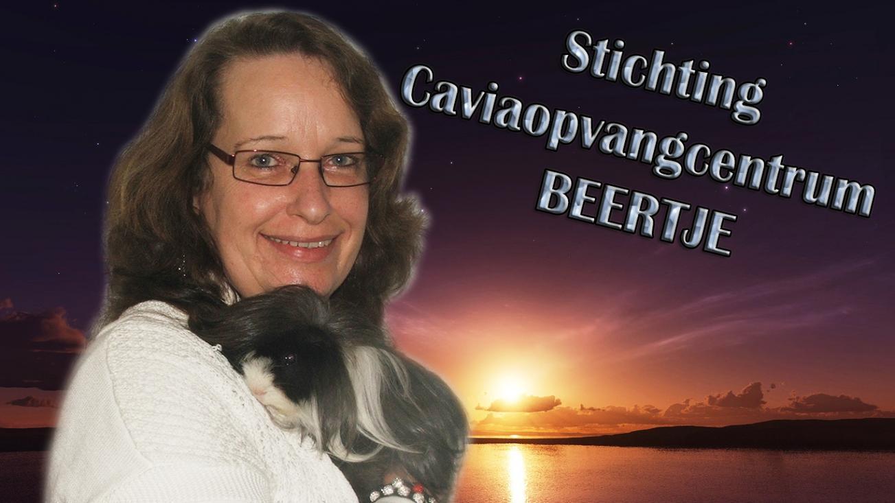 STICHTING CAVIAOPVANGCENTRUM BEERTJE
