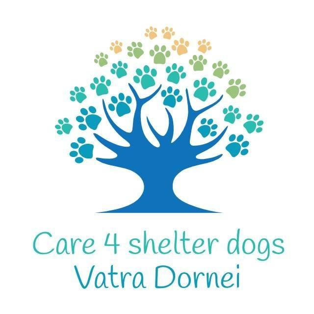 STICHTING CARE 4 SHELTER DOGS