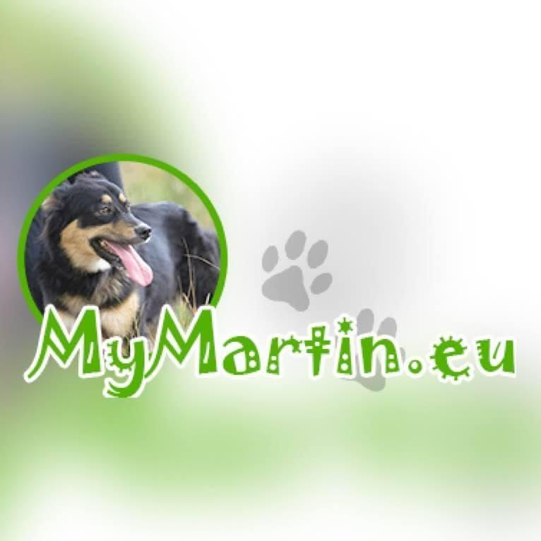 STICHTING MY MARTIN RUSSIAN SHELTER PETS