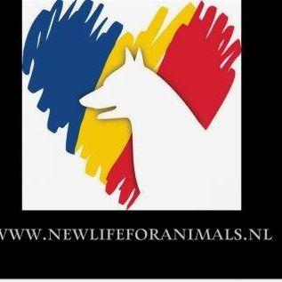 STICHTING NEW LIFE FOR ANIMALS ROEMENIE