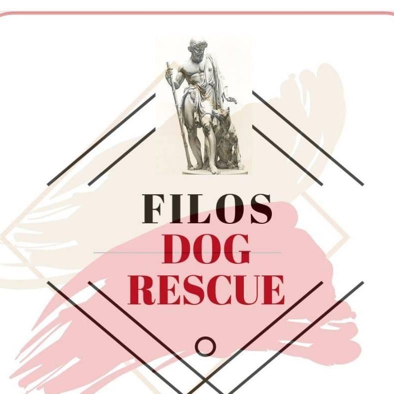 STICHTING FILOS DOG RESCUE