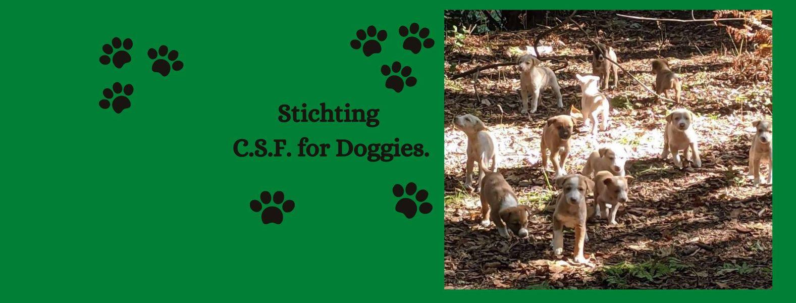 STICHTING C.S.F. FOR DOGGIES