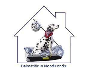 DALMATIER IN NOOD FONDS