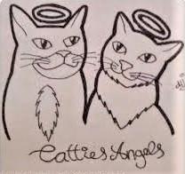 STICHTING CATTIES ANGELS